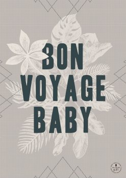THE INTRO COLLECTION Bon Voyage Baby